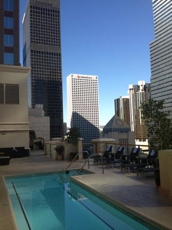 The Roosevelt Hotel: rooftop pool views!