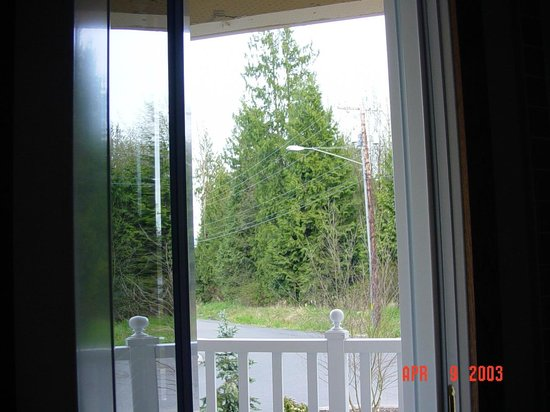 The Skagit Casino Resort:                                     View of the woods from my room