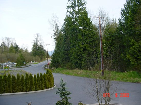 The Skagit Casino Resort:                                     Forest all around the hotel - clean, fresh air!!