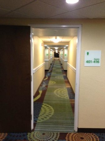 Holiday Inn Fort Myers - Downtown Area : Hallway on the 4th floor