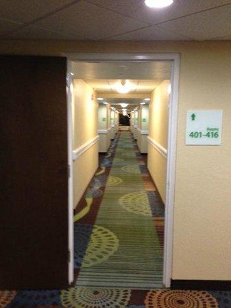 Holiday Inn Fort Myers - Downtown Area: Hallway on the 4th floor