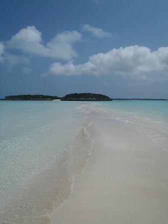 Staniel Cay Yacht Club:                                     sand bar