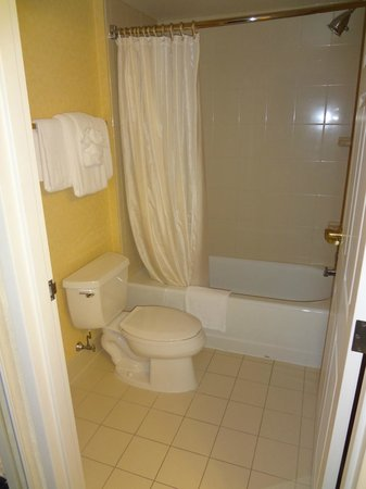 Residence Inn Chesapeake Greenbrier: Bathroom
