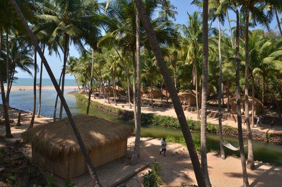 Dwarka Eco Beach Resort:                   good morning