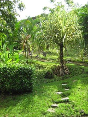 Tulemar Bungalows & Villas:                                     on property