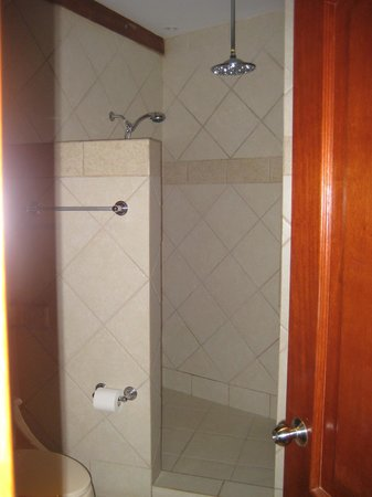 Tulemar Bungalows & Villas:                                     1br Select Villa (#306) shower