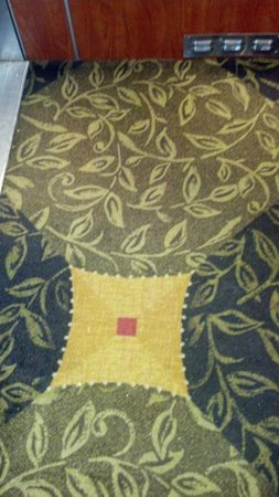 Hilton Garden Inn Savannah Midtown:                   CLEAN carpet in the elevator!