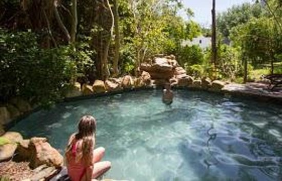 Riverside Boutique Hotel: Tree House Splash Pool