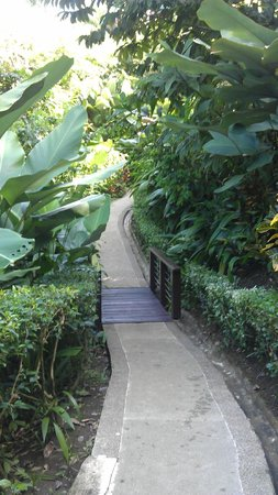 Tulemar Bungalows & Villas:                                     Walkway to our villa #306