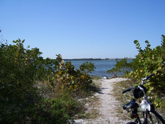 Cedar Point Environmental Park:                   the end of the trail at lemon bay