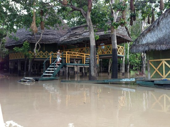 Amazon Yarapa River Lodge :                   Arrival dock