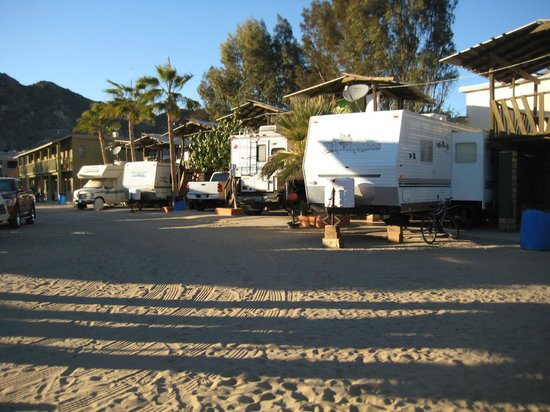 KiKis RV Camping & Hotel:                   Some of the winter bird RV'rs