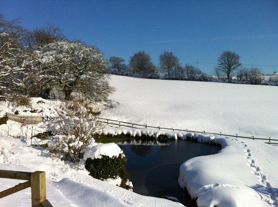 Little Quarme Cottages :                                     Little Quarme winter