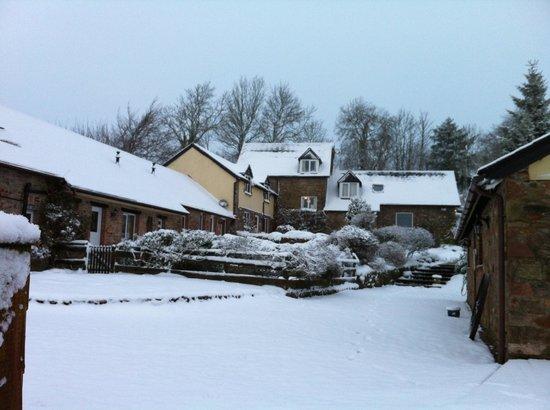 Little Quarme Cottages :                                     Snow capped cottages