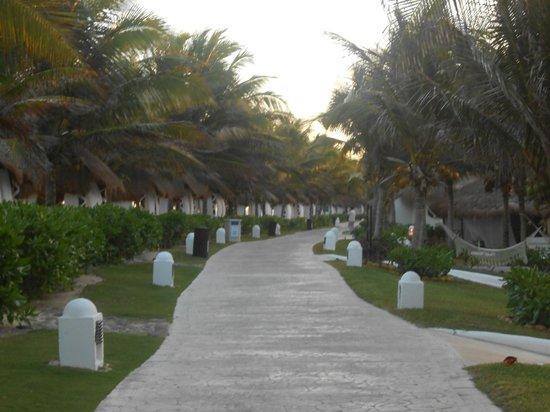 El Dorado Royale, a Spa Resort by Karisma: beach walkway