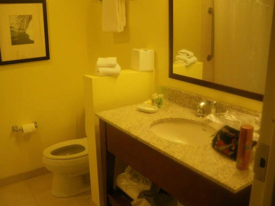Holiday Inn Orlando – Disney Springs Area: Spotless bathroom