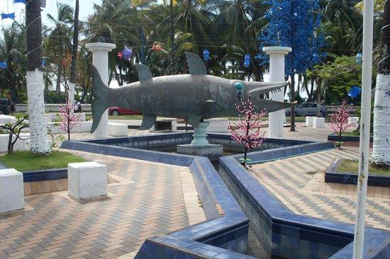 Sol Caribe Sea Flower Hotel : Caro, pero no el mejor hotel