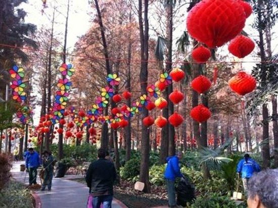 Liu Hua Hu Park :                   CNY Decorations