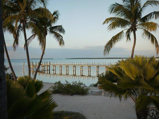 Casa Morada: view from garden