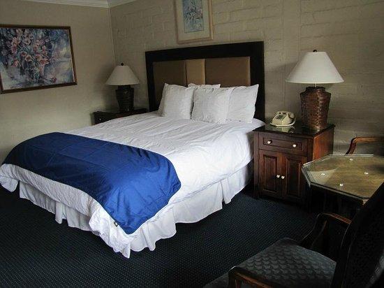 Carmel Village Inn:                   Habitación