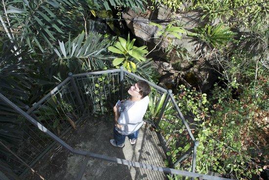 Currumbin Wildlife Sanctuary: inside the park