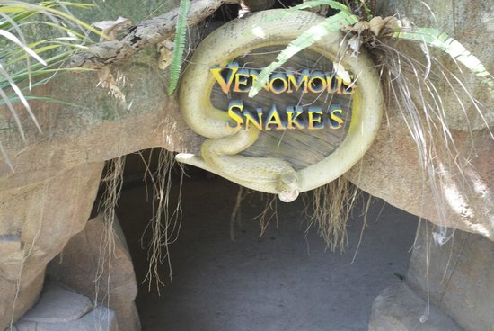 Currumbin Wildlife Sanctuary: venomous enter park