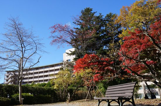 Hotel Harvest Kinugawa : Autumn colours at the hotel's foreground