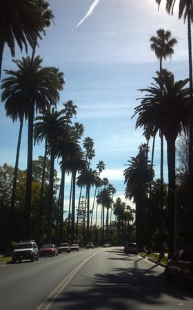 Glitterati Tours: Undeniably Beverly Hills!  A wonderful photo op during a private tour.