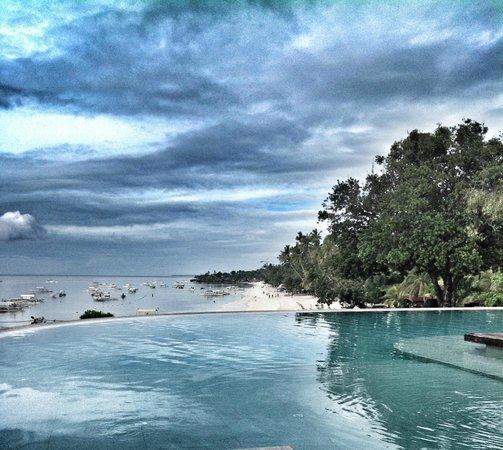 Amorita Resort: Amorita's Infinity Pool
