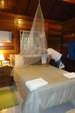 Aratinga Inn:                   La cama es súper cómoda al igual que las almohadas