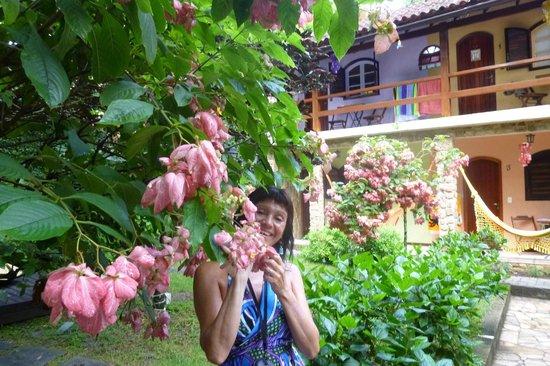 Aratinga Inn:                   Sacada desde el balcón de la habitación. Flores por todos lados!!