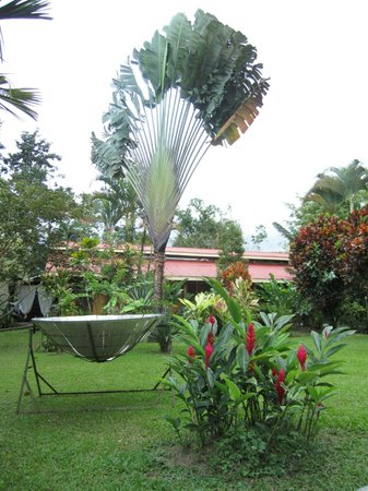 Catarata Eco Lodge S.A:                   Around the grounds