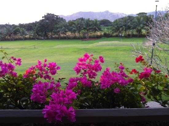 Novotel Nadi:                   golf course from room