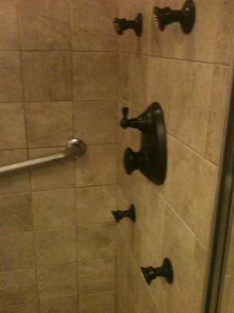 The Colonial Inn at Historic Smithville:                   Multi Jet Shower (The Johnson Suite 201)