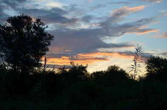 Naledi Bushcamp and Enkoveni Camp:                   Kreuger sunset
