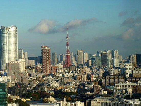 Cerulean Tower Tokyu Hotel:                   部屋から見えた東京タワー