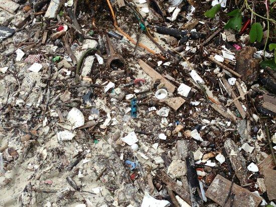 Bunga Raya Island Resort & Spa :                                                       Sand Covered with Rubbish