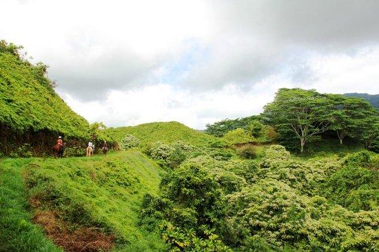 Kuilau Ridge Trail