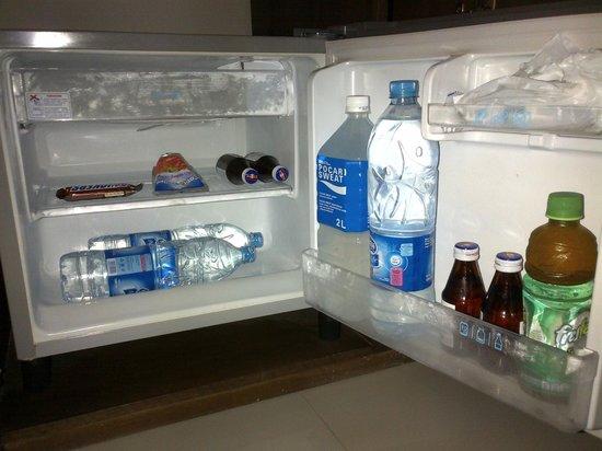 Uma Karan:                   a working fridge is important