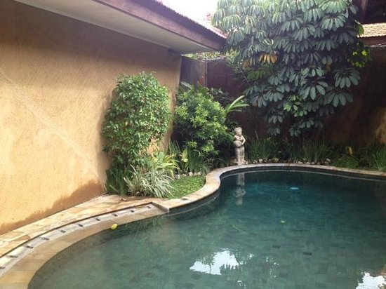 Putri Bali Suite Villa:                                     Pool area