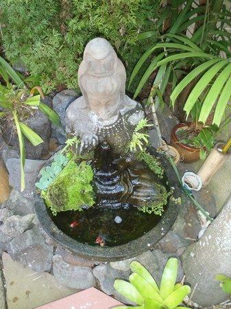 Honu Kai B&B:                   Garden