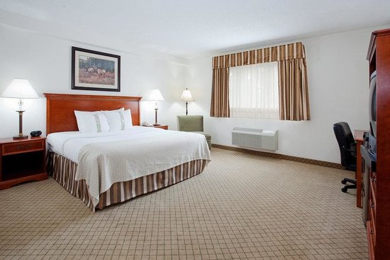 Holiday Inn Vail - TEMPORARILY CLOSED: King Bed Guest Room
