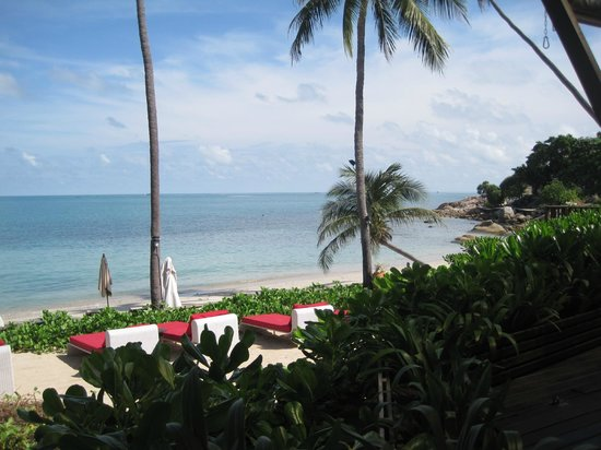 Melati Beach Resort & Spa:                   beach