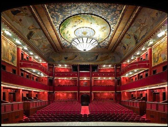 Sureyya Opera House