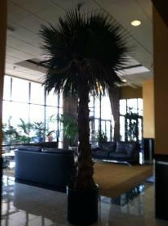 Best Western Plus Hotel & Conference Center:                   The lobby.