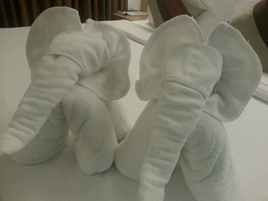 "CityPoint Hotel:                   I like the ""elephant"" towels. They are cute!"