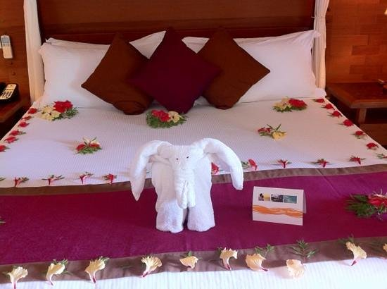 Kuramathi Island Resort:                   bed on arrival
