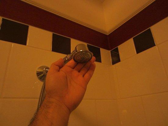 Hotel Kipling - Manotel Geneva:                                     very small shower head