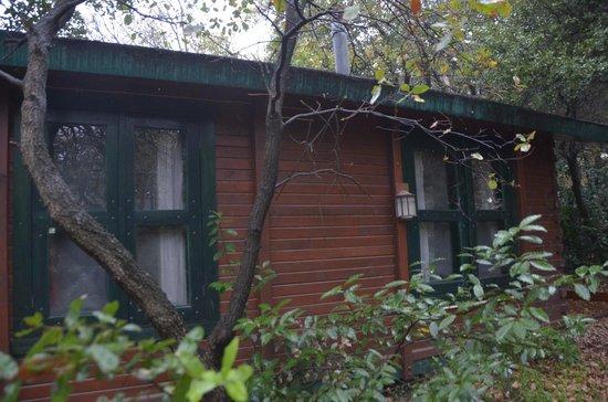 Eretz Ha Galil :                   Outside of Cabin