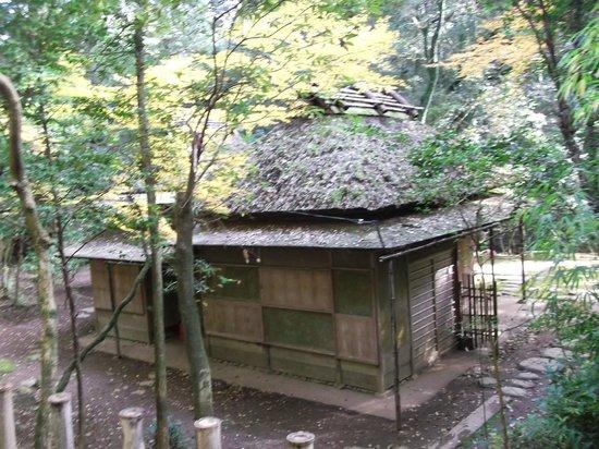 Tatsuta Natural Park :                   立田自然公園の写真その3